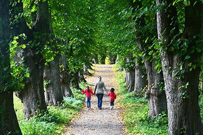 Estate planning page family walking